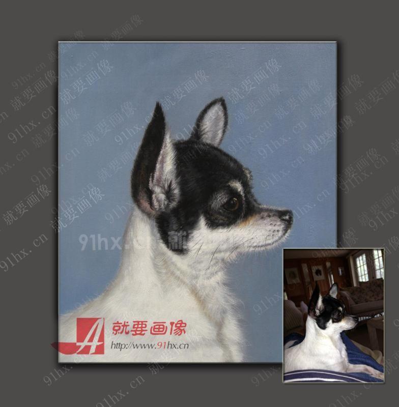 想找个人帮我画幅宠物画像-可爱小狗油画