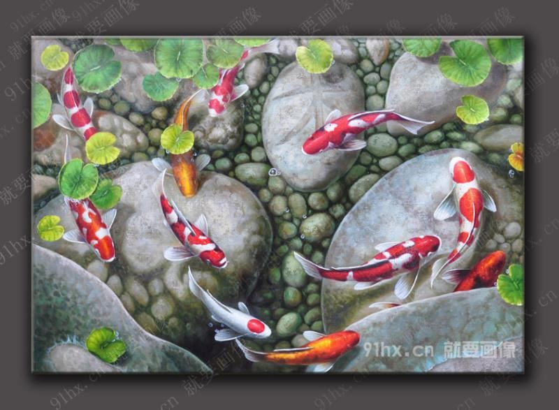 风水鲤鱼图片